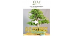 Eastern Leaf coupon code