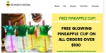 The Pineapple Everything discount code
