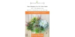 Air Plant Supply Co coupon code