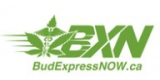 Bud Express Now