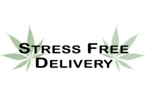 Stress Free Delivery logo