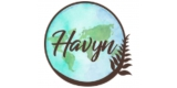 Havyn International
