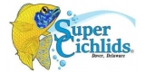 Super Cichlids